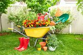 Wheelbarrow with shovel and rake in a beautiful garden