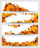 foto of colorful banner  - Set of four vector banners with orange pumpkins and colorful autumn leaves - JPG