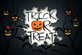 Trick Or Treat Tree Halloween Pumpkins Bats Black Background