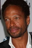 LOS ANGELES - OCT 6:  Gary Dourdan at the Les Girls 14 at Avalon on October 6, 2014 in Los Angeles, CA