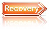 Recovery recover lost data or from crisis and recession road to full economic recovery