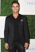 LOS ANGELES - OCT 7:  Colin Egglesfield at the Club Tacori 2014 at Hyde on October 7, 2014 in West Hollywood, CA