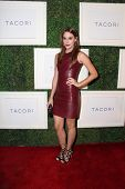 LOS ANGELES - OCT 7:  Christa B Allen at the Club Tacori 2014 at Hyde on October 7, 2014 in West Hollywood, CA