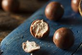 picture of malt  - Dark Chocolate Malted Milk Balls in a Bowl - JPG
