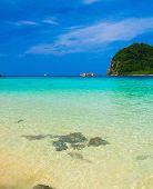 Divine Shoreline Vacation Retreat