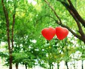 Love heart balloons, outdoors