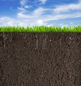 Soil or dirt section with grass under sky
