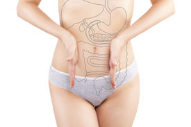image of rectum  - Beautiful woman photography isolated on white background with inner organs illustration on her body - JPG
