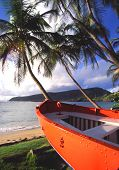Barco naranja por cocoteros