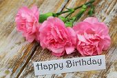 Happy Birthday card with pink carnation flowers