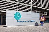 The Lisbon Oceanarium