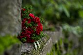 Bouquet Of Red Roses Lying On The Old Stones Covered With Moss