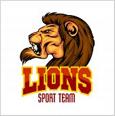 Lion head mascot - vector illustration for sport team