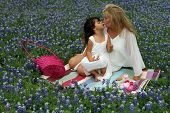 Easter Tea Party In Texas Bluebonnets