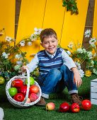 Spring boy with apples.