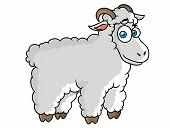 Cartoon farm sheep character