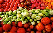 Fresh Tomatoes And Tomatillos