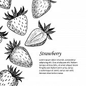 Hand-drawn Vector Illustration. Card Or Banner With Strawberry. Isolated On White Background.