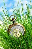 Vintage Pocket Watch In Green Grass