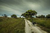 Mediterranean cycling path 2