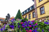 stock photo of petunia  - Blue Petunias before the town Fontaine in Fulda - JPG