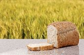 foto of whole-wheat  - whole wheat bread with barley field background - JPG