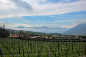 stock photo of snow capped mountains  - Farm land in the Swiss mountains with the snow capped Swiss Alps behind - JPG