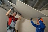 picture of crew cut  - Drywall Installers - JPG