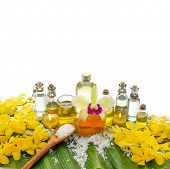 foto of yellow orchid  - Spa set on banana leaf  - JPG