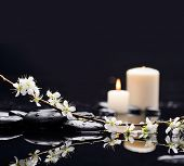 foto of black-cherry  - Still life with cherry blossom with candle on black stones - JPG