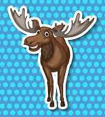 foto of caribou  - Brown moose smiling with blue background - JPG