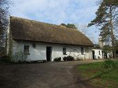 Irish Tatch Cottage