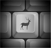 Deer Icon on Computer Keyboard Original Illustration
