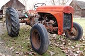 Vintage rusted red tractor surrounded