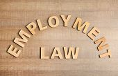 Flat Lay Composition With Words Employment Law On Wooden Background poster