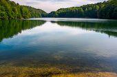 Trout Near The Shore Of Wild Lake. Beautiful Summer Landscape. Location Morske Oko Lake Of Slovakia. poster