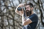 Bearded Man Taking Photo On Sunny Day. Photographer Concept. Man With Long Beard Busy With Shooting  poster