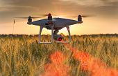Drone Flying Above Wheat Field And Mapping poster