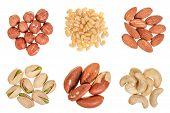 Mixed Of Nuts Heap Isolated On White Background. Almonds, Cashews, Hazelnuts, Pine And Brazil Nuts.  poster