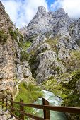 View from hiking trail (Cares Trail or Ruta del Cares) along river Cares in spring ( near  Cain), Pi poster