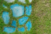 Lawn Grass Stones Walk Footpath Green Sky Blue Natural. poster