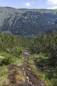 Landscape Of Trail For The Stinky Lake (smradlivoto Lake) From Area Of Tiha Rila (quiet Rila), Rila  poster