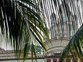 Kolkata,west Bengal/india-march 22 2018:part Of Dakshineswar Kali Temple Seen With Palm Leaves In Fo poster