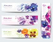 Viola flower vector background .  Set of floral cards.
