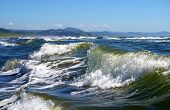 image of sakhalin  - The Storm waves wear down on sandy coast. White reproaching comb of the wave of the ultramarine color.  Pacific ocean island Sakhalin. - JPG