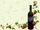 Fundo de vinhos