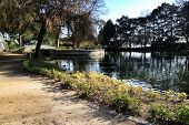 Beautiful Pond With Ducks In The Idyllic Crystal Palace Garden In Oporto, Portugal poster