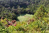 famous Mauritius tourist place-volcano crater Trou aux Cerfs
