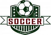 Vintage Style Soccer Crest Badge