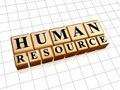 Human Resources In Golden Cubes
